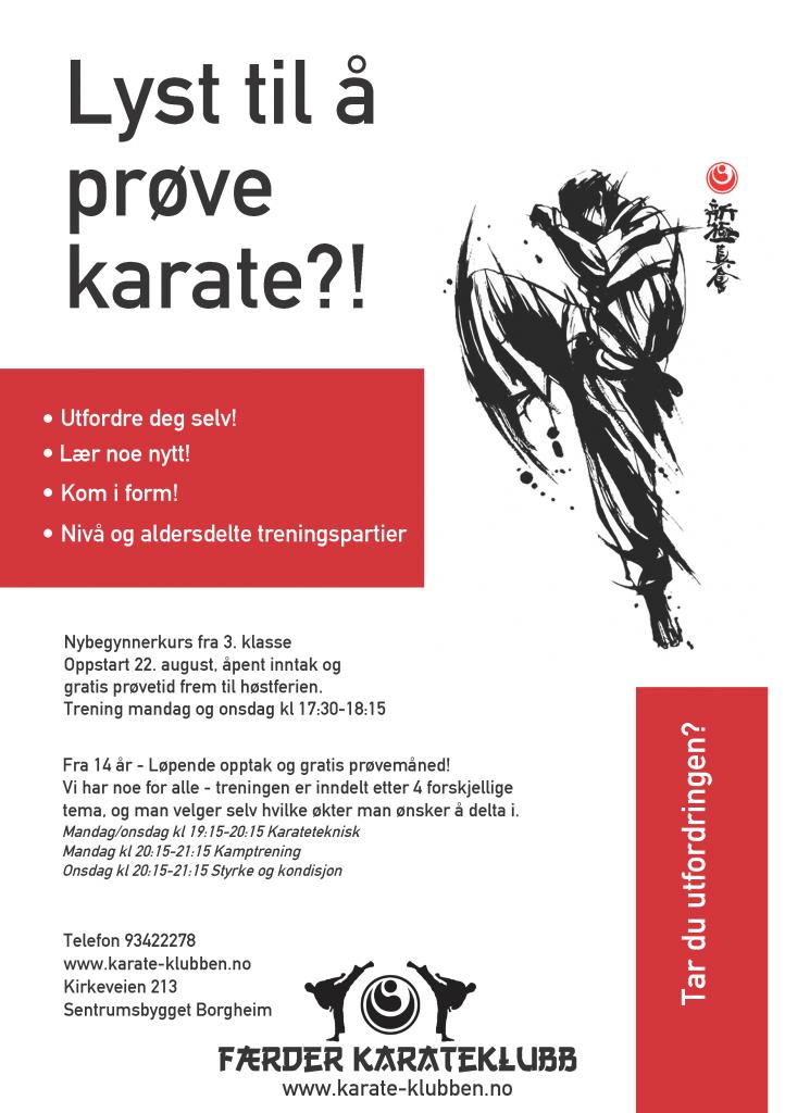 Karateplakat16